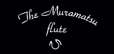 Muramatsu是什么牌子_村松品牌怎么样?