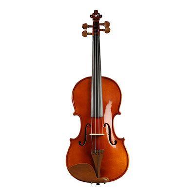 小提琴哪个牌子好_2020小提琴十大品牌-百强网