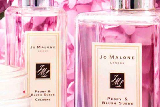 祖马龙(Jo Malone)香水有哪几种?祖马龙红玫瑰香味怎么样?-3