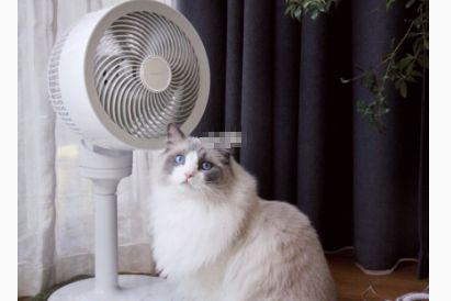 艾美特空气循环扇怎么样?使用心得如何?-1