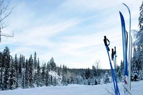滑雪的基本要领是什么?滑雪杖应符合选择-1