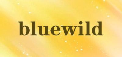 bluewild山地车灯