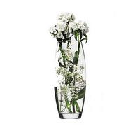 玻璃花瓶哪个牌子好_2019玻璃花瓶十大品牌-百强网