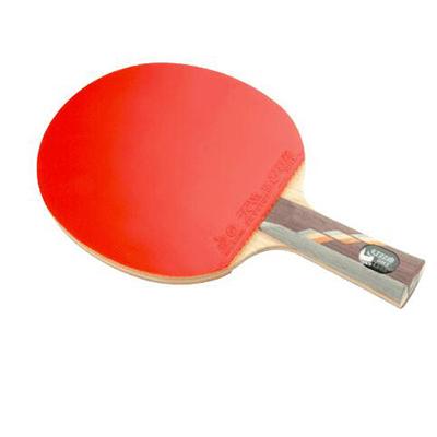 乒乓球拍哪个牌子好_2021乒乓球拍十大品牌-百强网