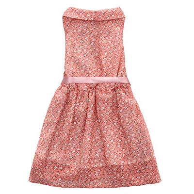 雪纺连衣裙